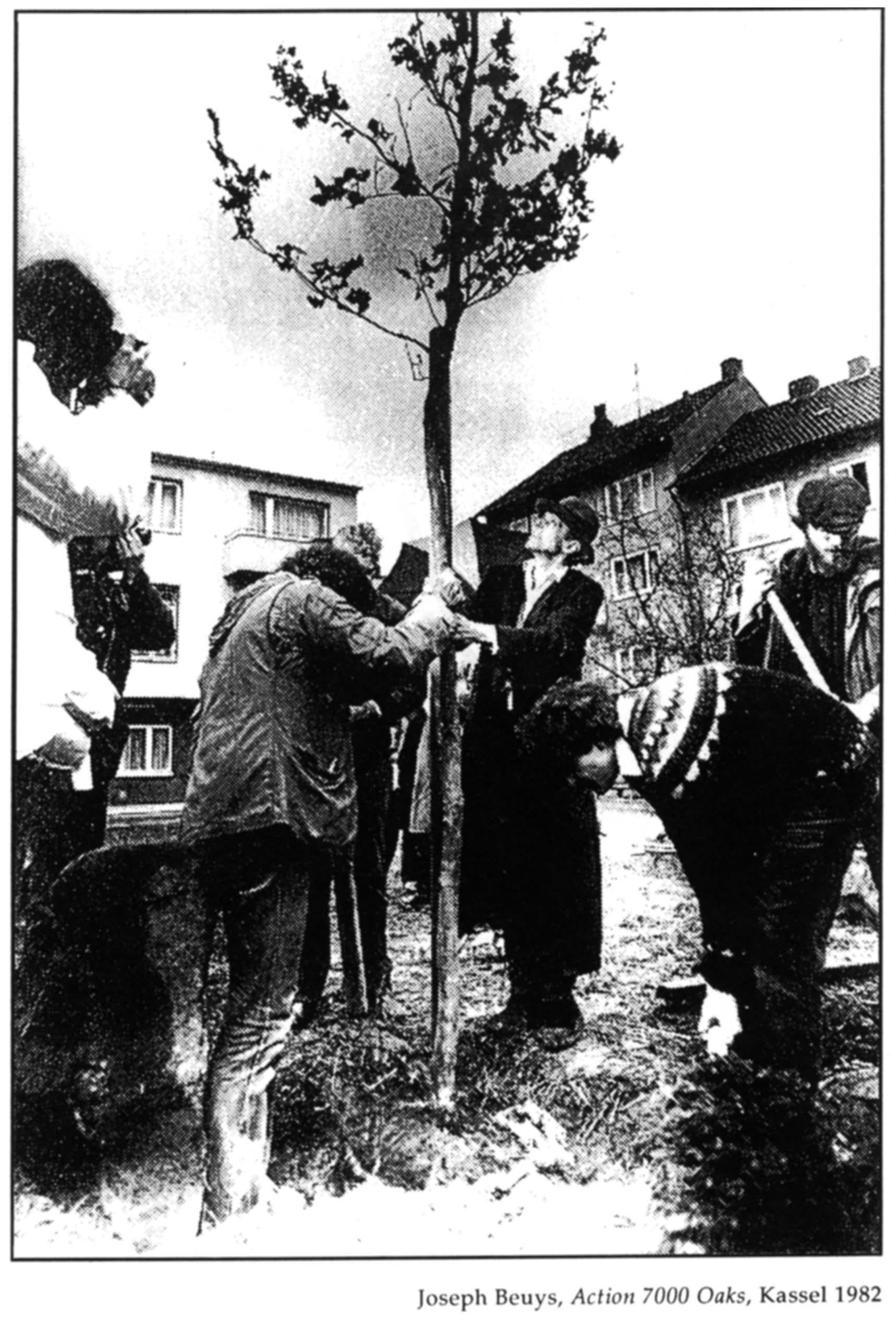 ACTION 7000 OAKS Joseph Beuys  Documenta 7 Kassel 1982