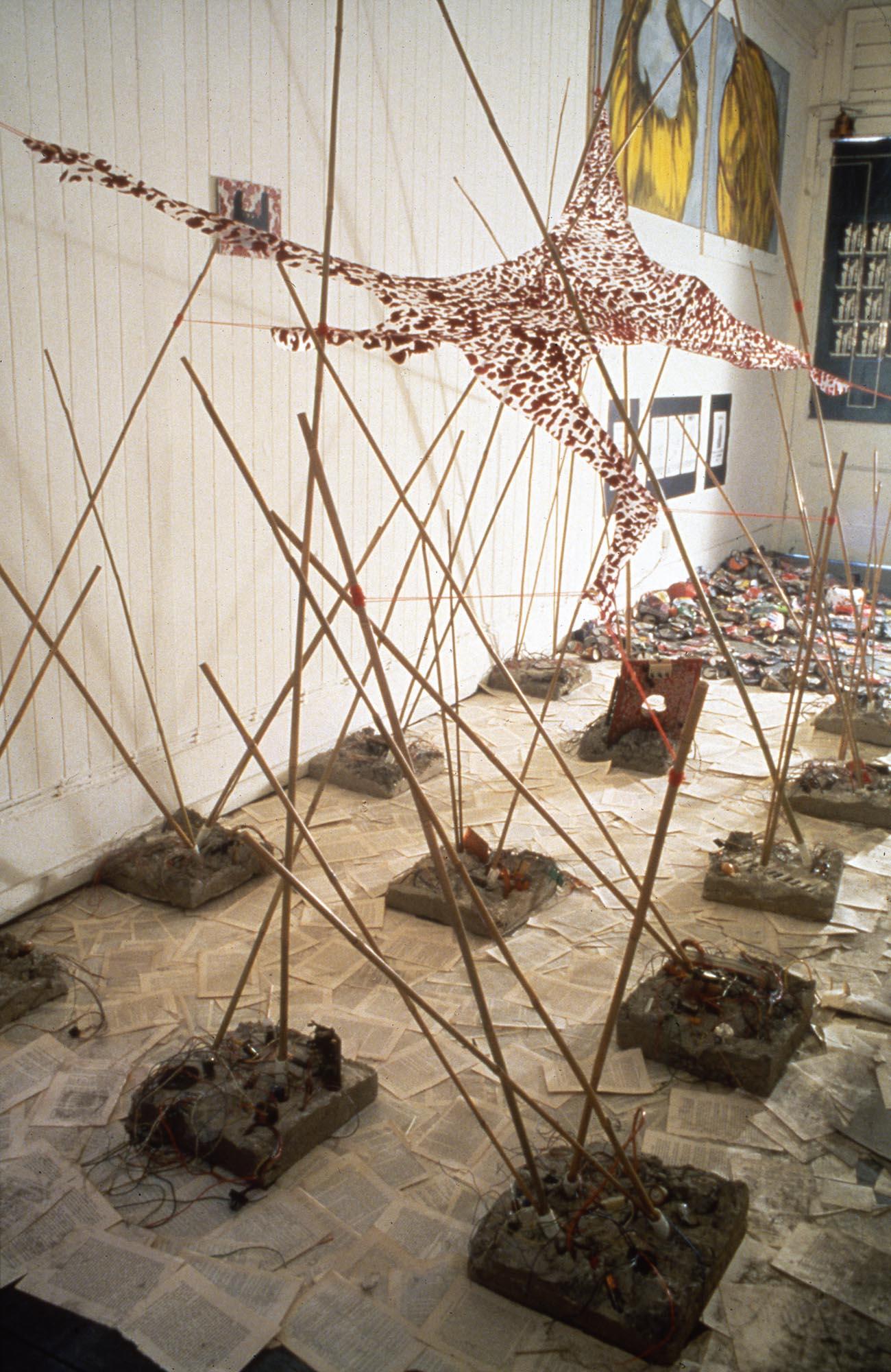 Desire in Ruins - Baxter Dickason Hopton Installation